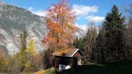 Auf dem Weg vom Tramser Weiher zur Hubertuskapelle (von Landek nach Zams) Tirol_Austria